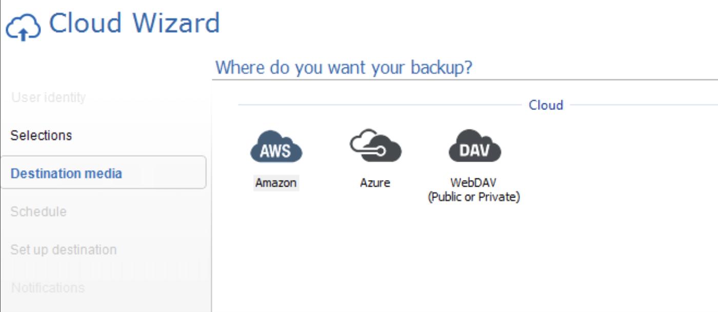 WebDAV interface options